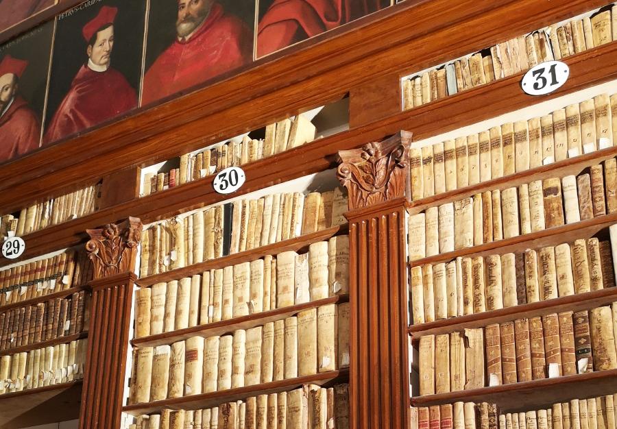 Biblioteca Ludovico Torres
